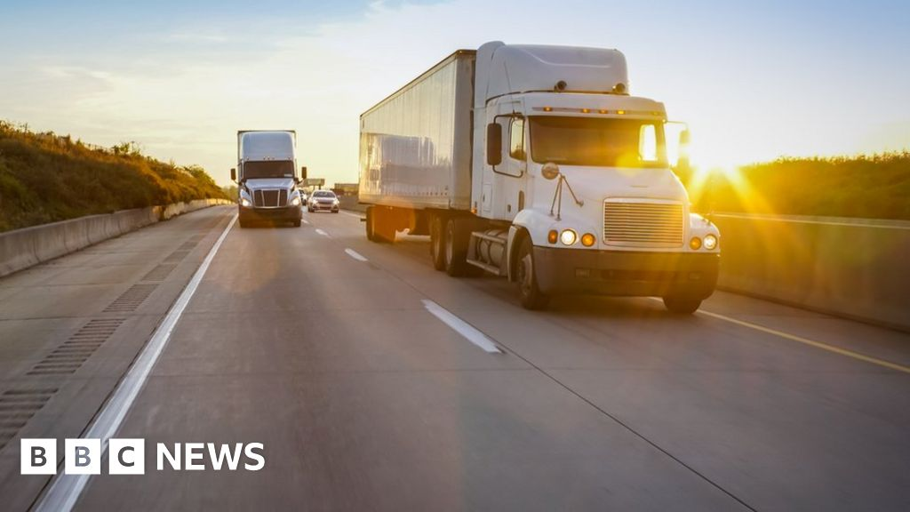 Lorry import tariffs to be cut in no-deal Brexit