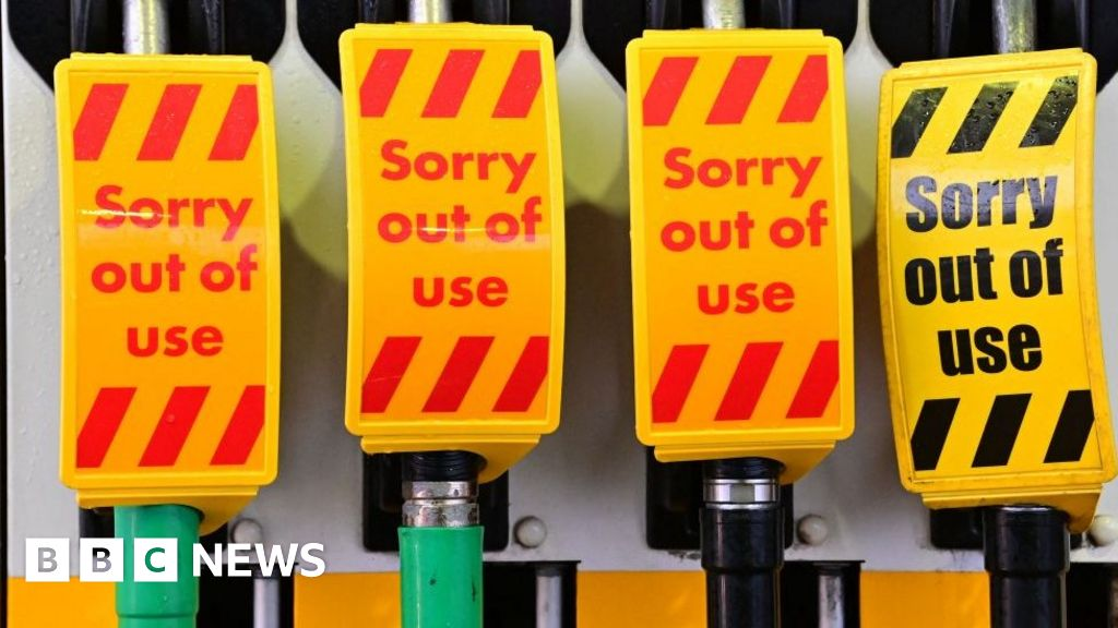 Fuel shortage: Why are Britons panic-buying petrol?