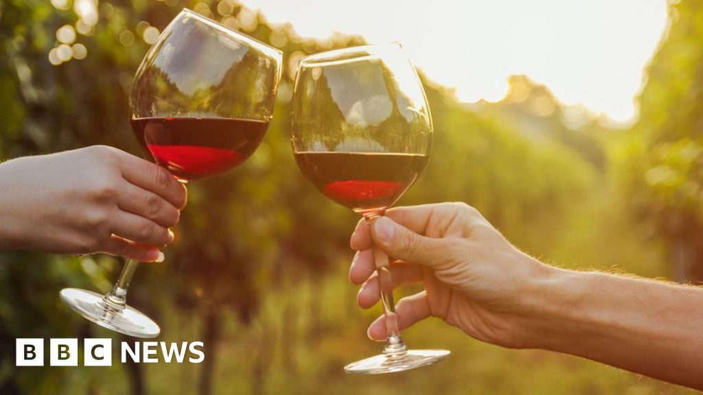 Why Red Wine Could Be Good For Your Gut In Moderation Bbc News