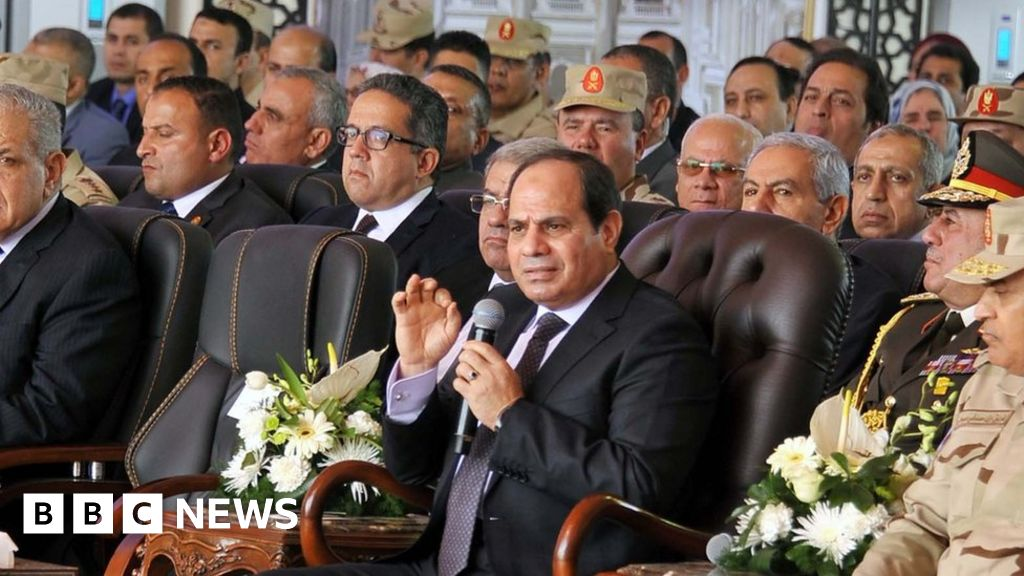 Insulting Egyptian security forces is high treason, says Sisi