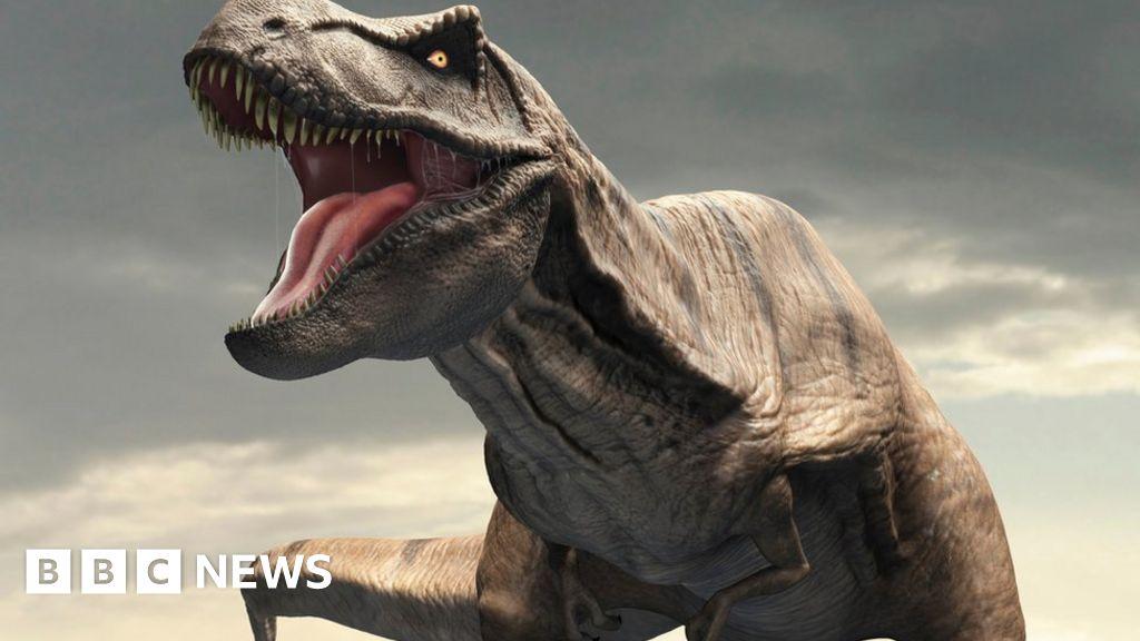 Tyrannosaurus rex had 'air-con' in its head