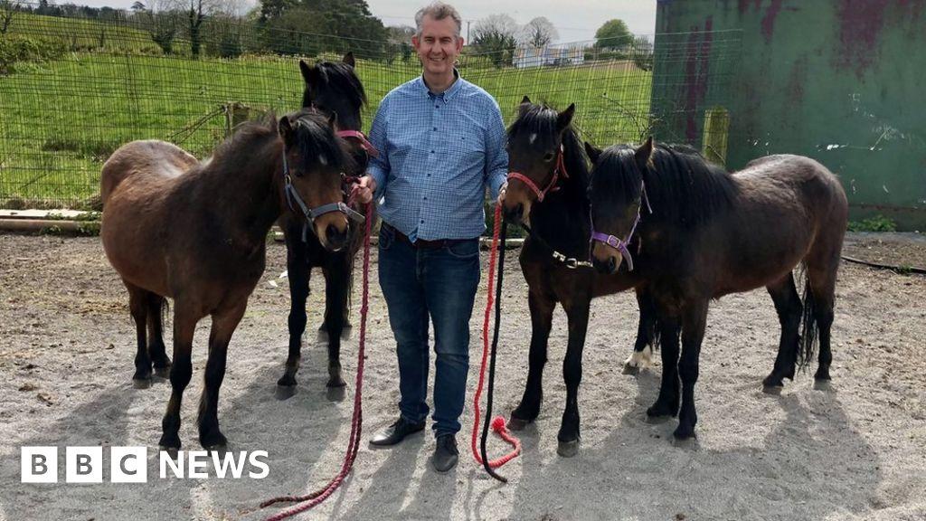 118172942 poniespootsjfif