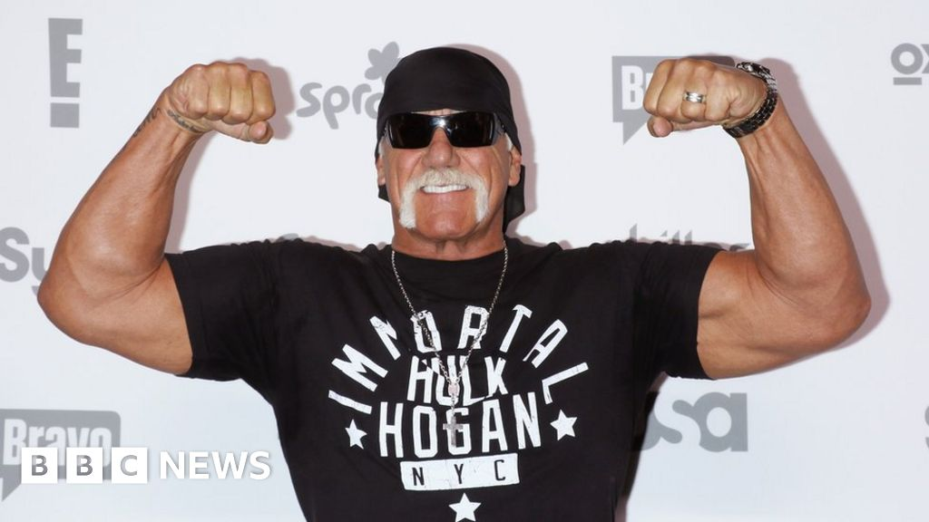 Hogan back in WWE Hall of Fame after racism