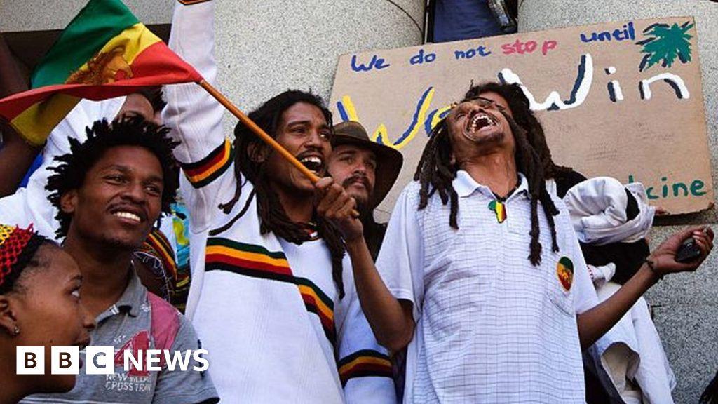 SA top court legalises cannabis use