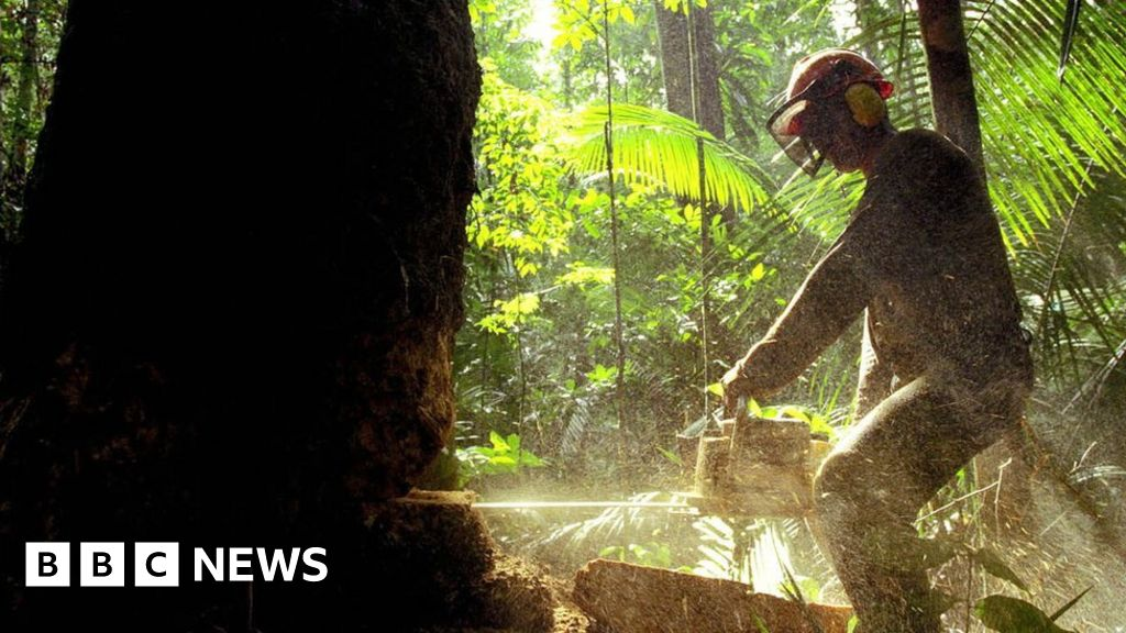Humans waging 'suicidal war' on nature - UN chief Antonio Guterres