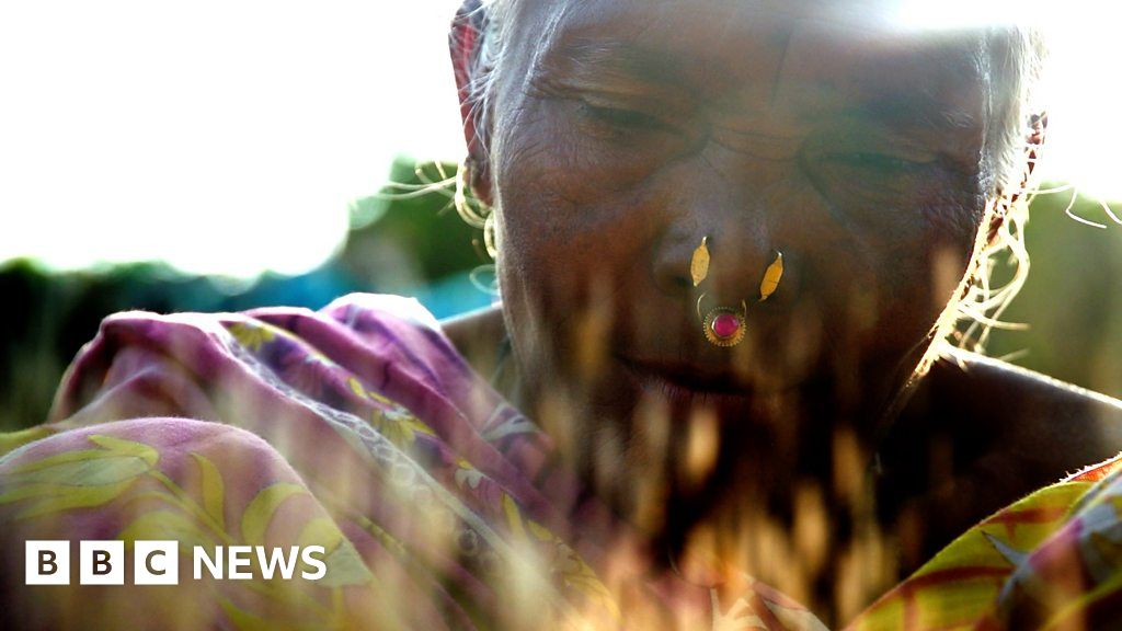 Saving India's traditional rice varieties