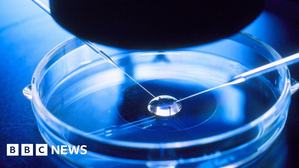 Woman 'gave birth to wrong babies in IVF mix-up'