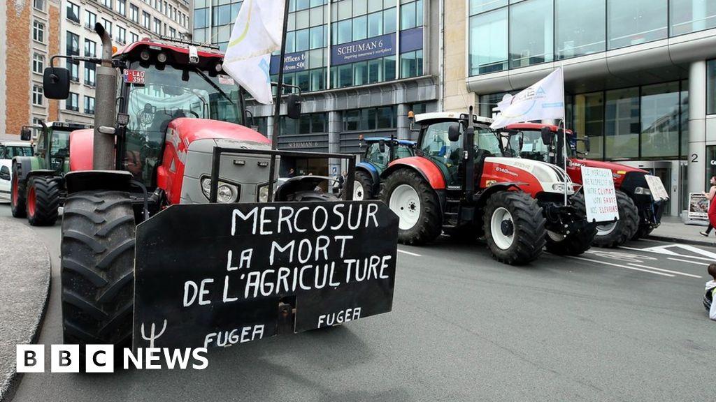 Austria blocked an EU Mercosur trade deal with South America