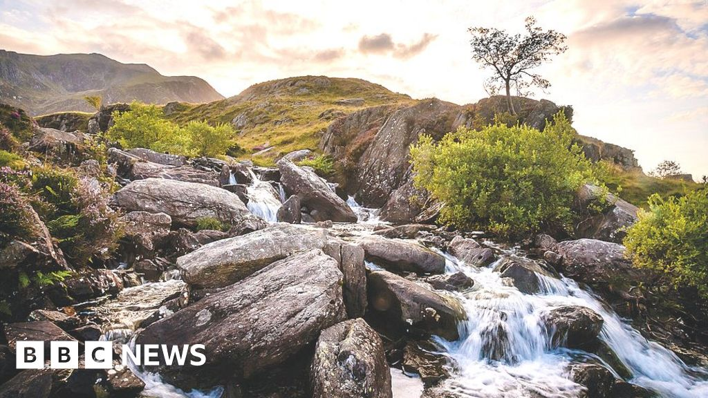 Small waters 'can help address biodiversity crisis'