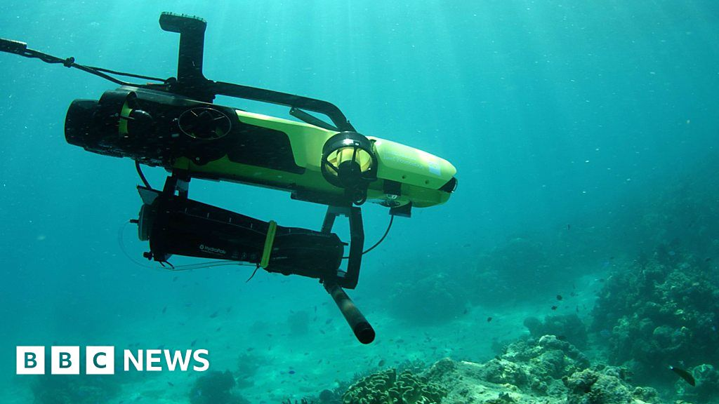 Reef rescue: Could this robot help save corals? thumbnail