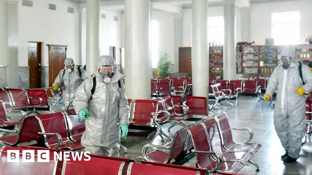 Northern Korea handle a Covid-19-outbreak?