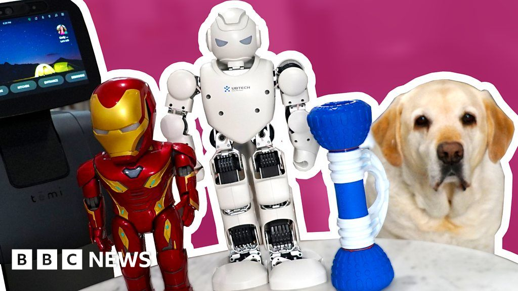 Coronavirus: May be able to animate this robot roommate lockdown?