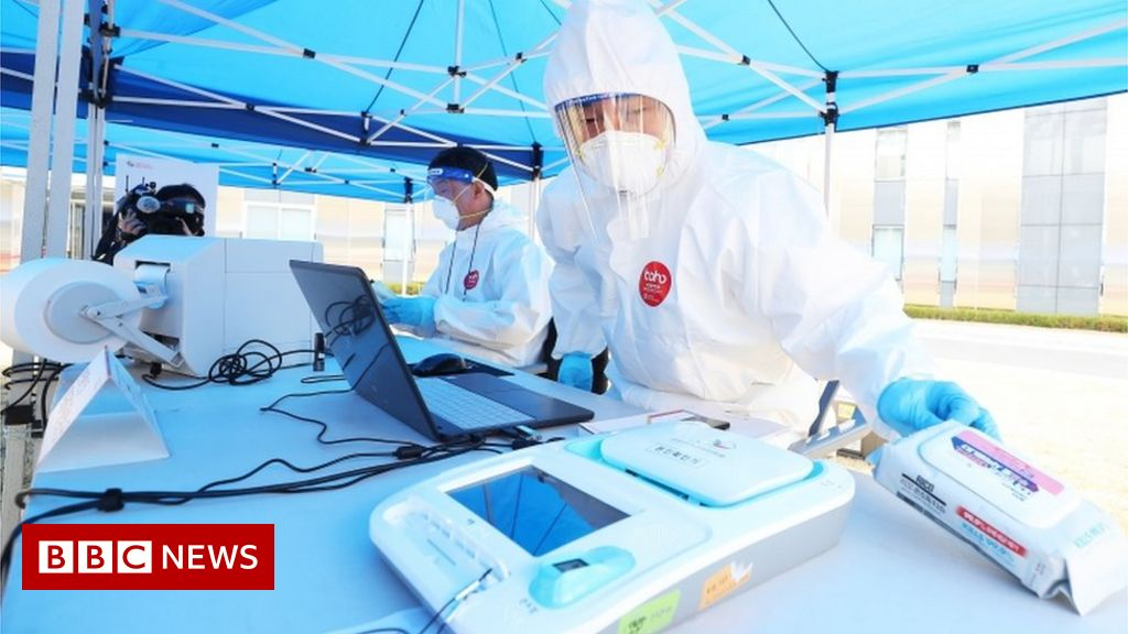 Coronavirus: South Korea holds elections in masks and clinics