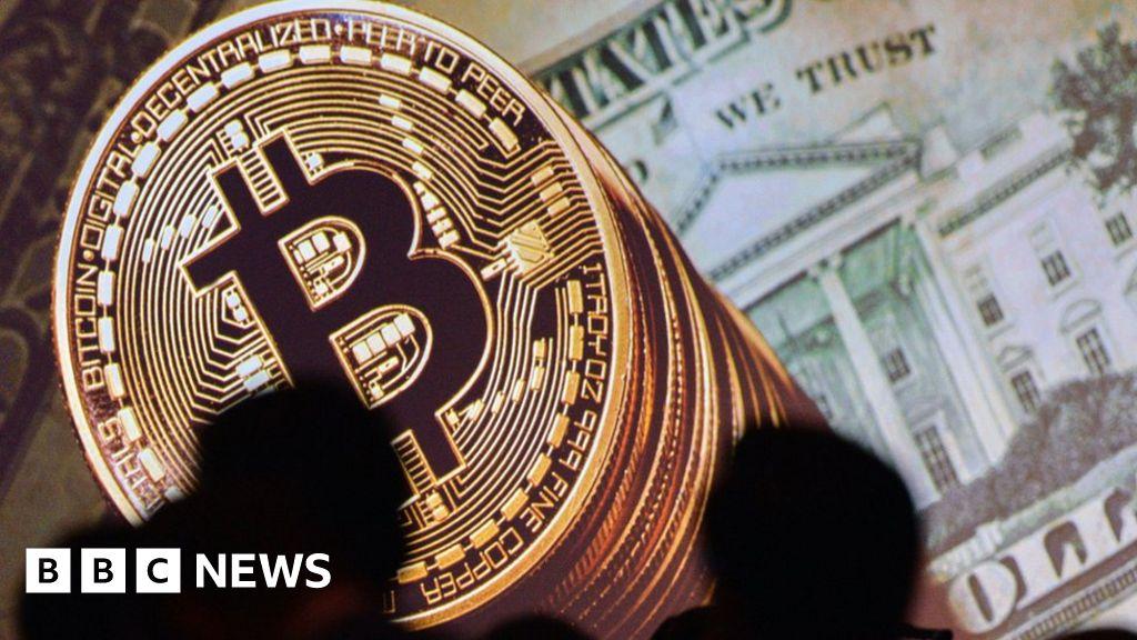 Kriptorinkų apžvalga Kodėl bitcoin pardavinėjo banginiai? | Fish pet, Bitcoin, Pets