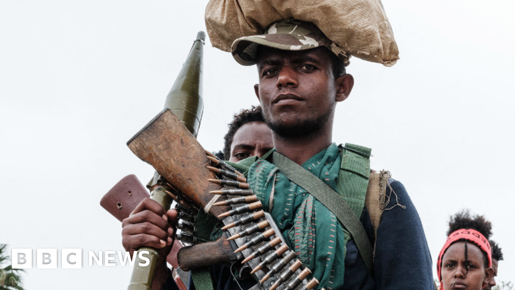 Ethiopia: Growing concerns for unity as Tigray conflict spreads