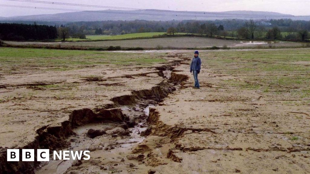 Mps sound alarm on neglected soils bbc news for Soil uk tour 2016