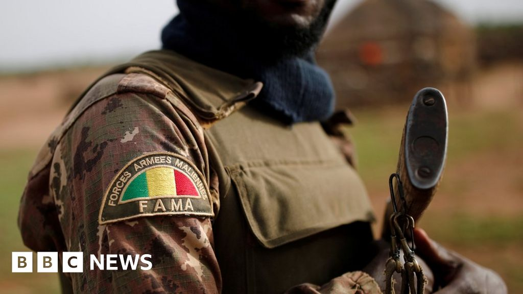 Mali army loses 24 soldiers in Niger border attack
