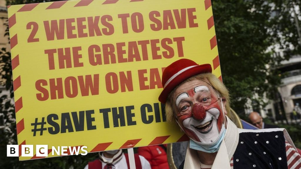 Circuses say they face collapse without government support