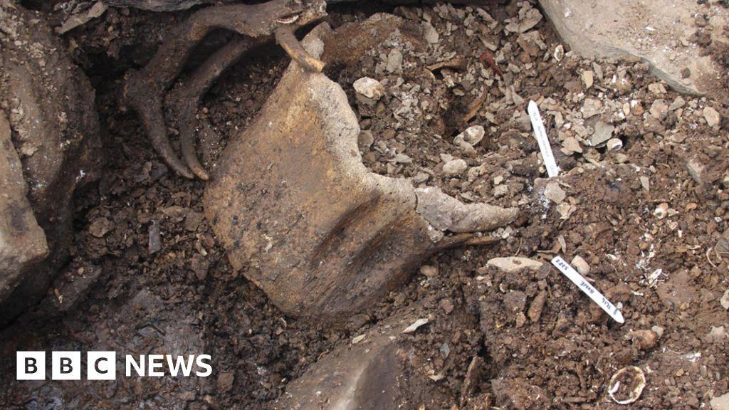 ontario human remains found - 1024×576