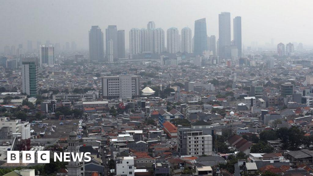 Indonesia picks Borneo island as site of new capital