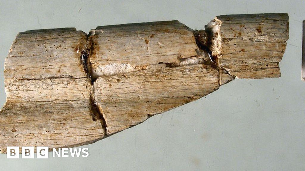 Dig reveals Durham's 'earliest resident'
