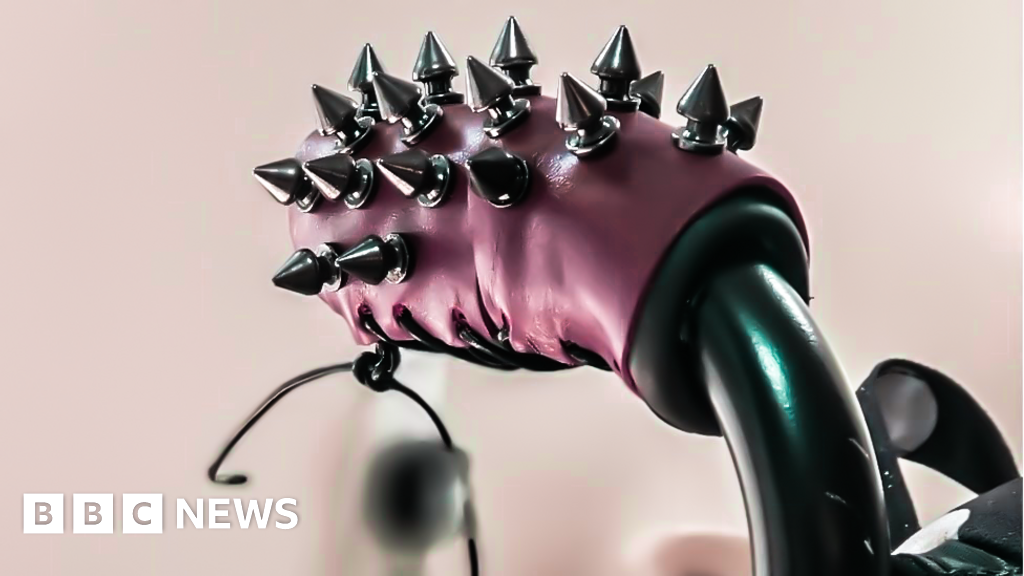 Spikes - and other ways disabled people combat unwanted touching