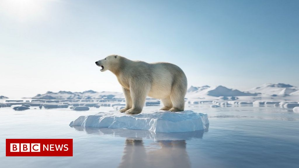 Climate change: Five things we have learned from the IPCC report