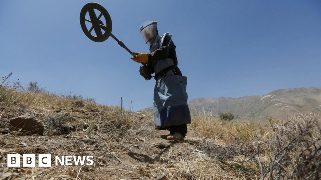 Halo Trust: Afghanistan mine clearance workers shot dead 'in cold blood'