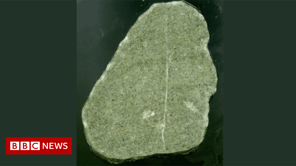 Climate change: A small green rock's warning about our future