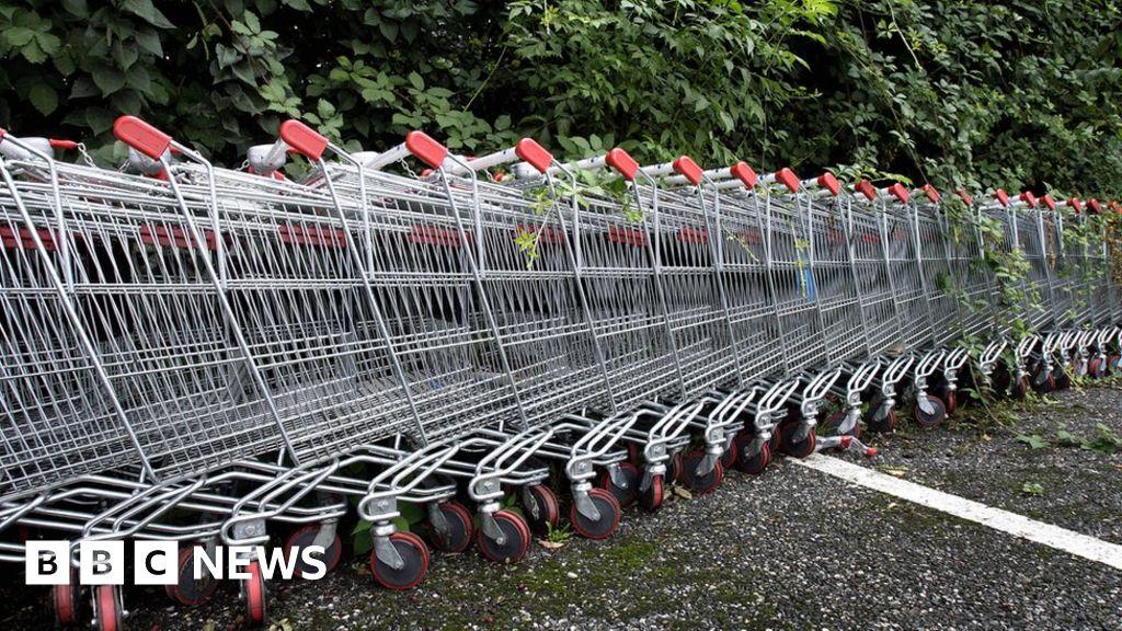 Swedish man killed in Sydney shopping trolley crash