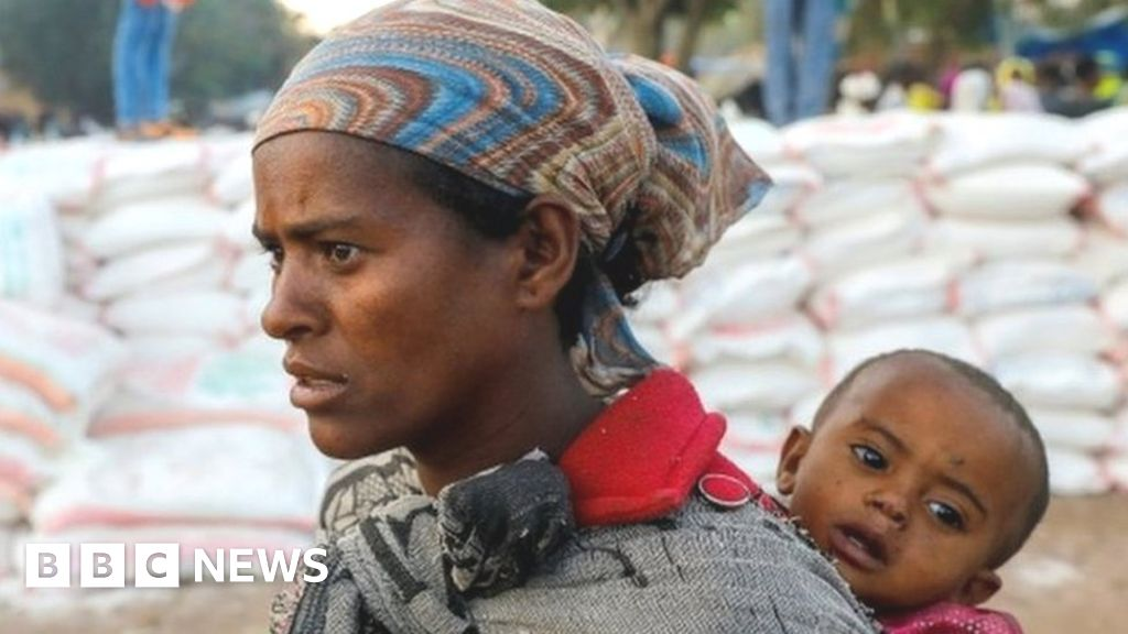 Ethiopia's Tigray crisis: Why are hundreds of aid trucks stranded?