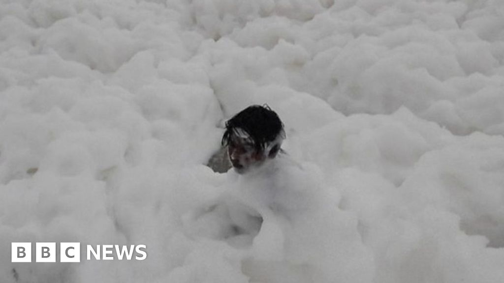 Chennai: Children play as 'toxic' foam blankets Indian beach