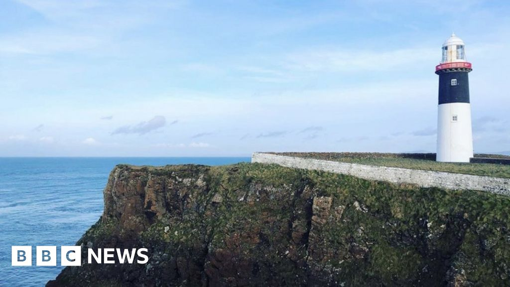 Northern Ireland's marine carbon stores help fight climate change - BBC News