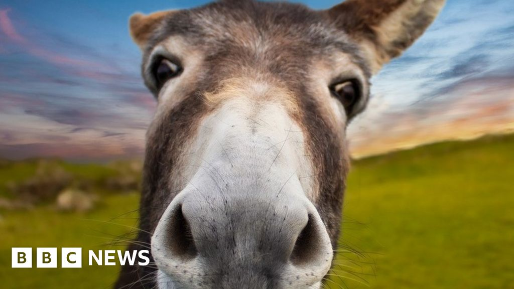 Your pictures of Scotland