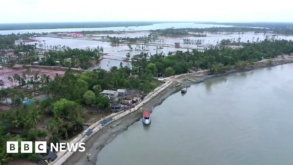 Sundarbans: why the world's largest mangrove forest is sinking