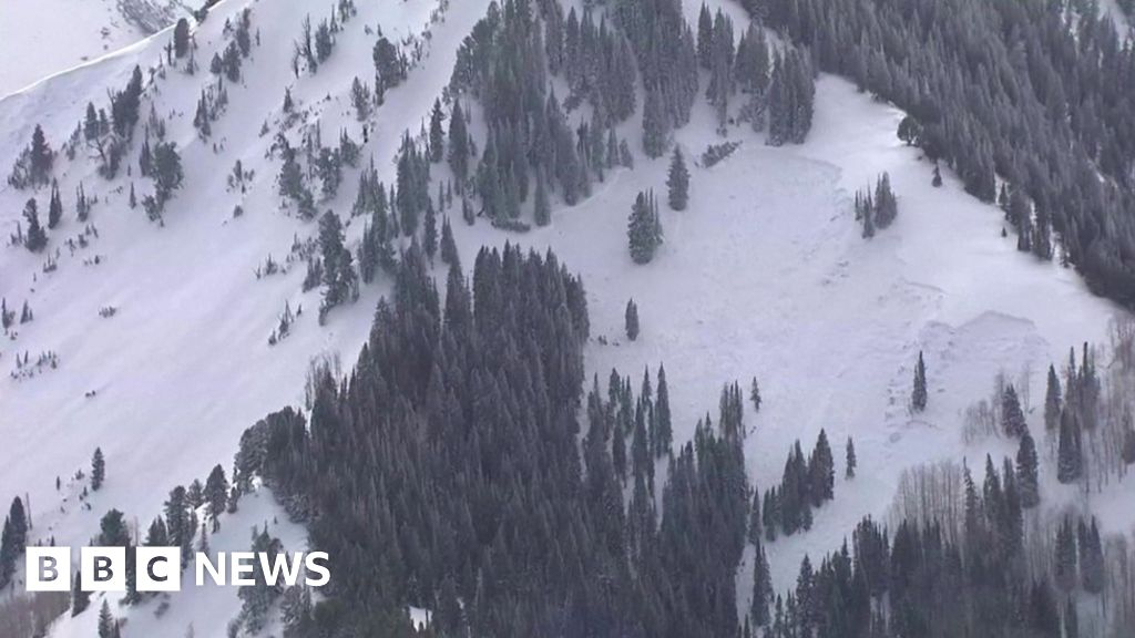 Utah avalanche: Four skiers killed after snowslide near Salt Lake City