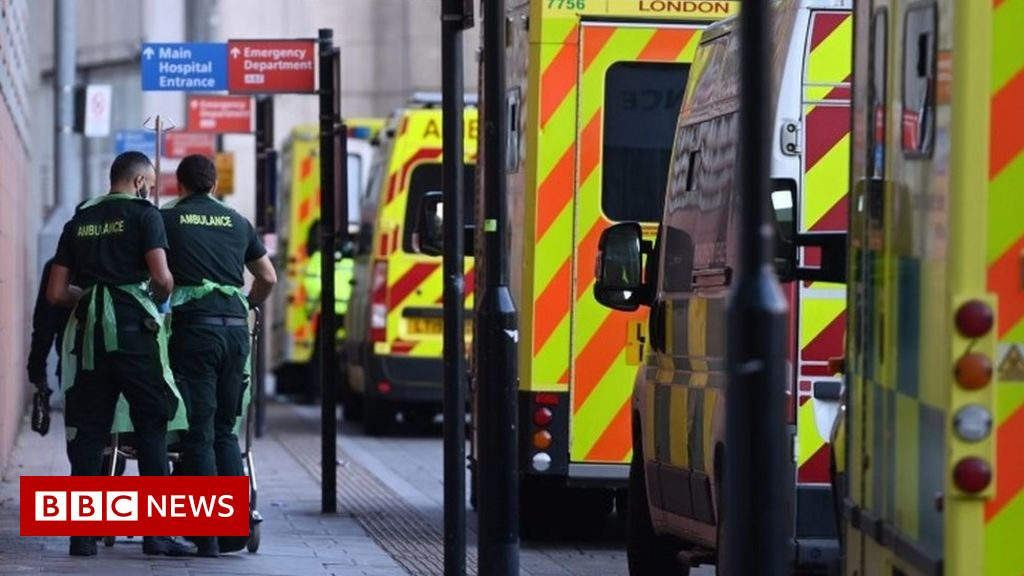 Covid-19: 'Poor decisions' to blame for UK death toll, scientists say