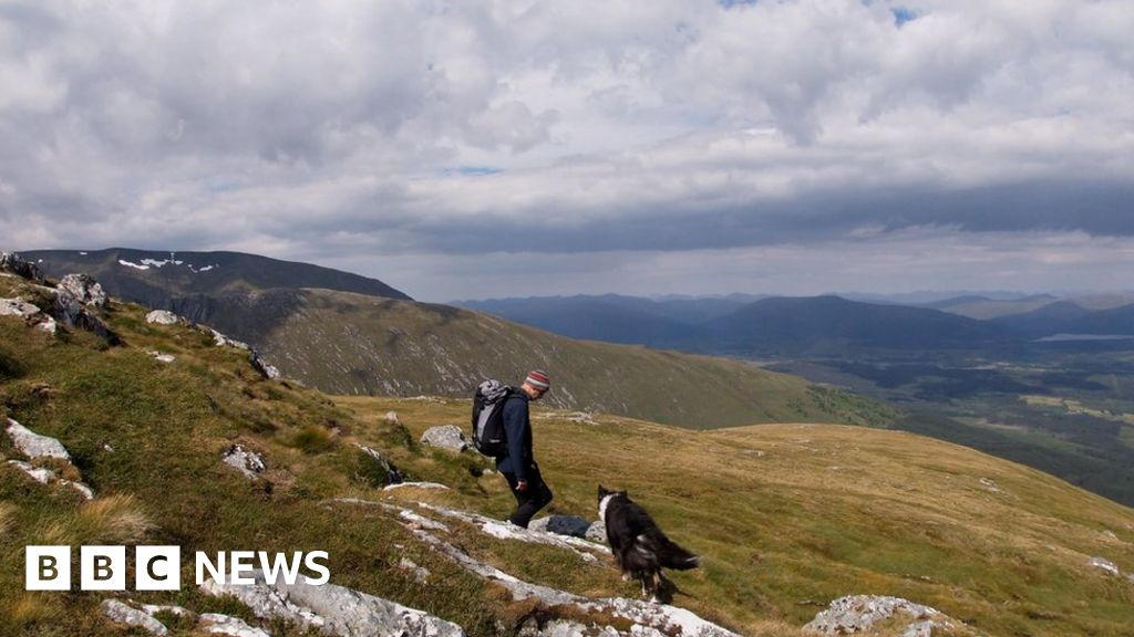 Flowers of Scotland sent south to English hills
