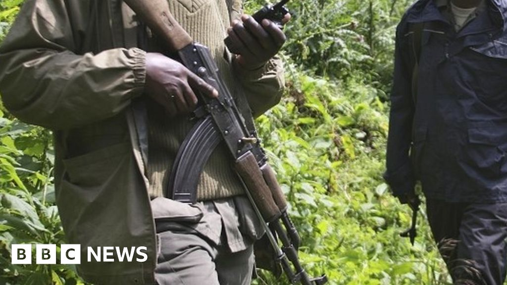 Six rangers killed in DR Congo's Virunga National Park