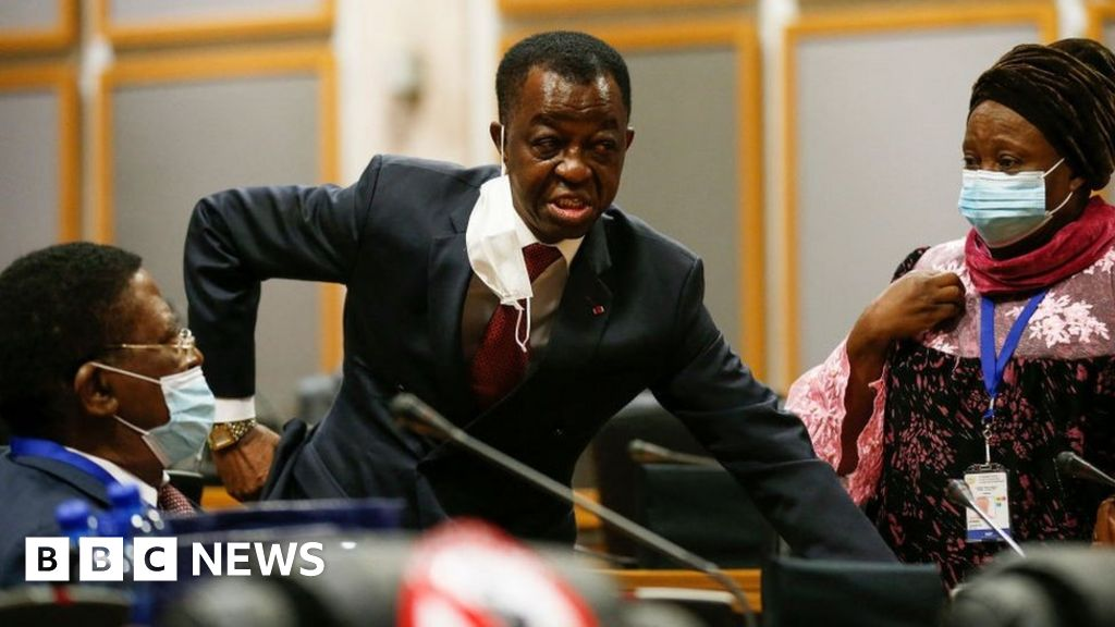 Pan-African Parliament: Punches, kicks and death threats