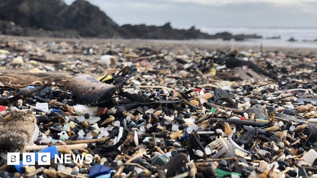 Beach visitors 'left speechless' by plastic debris