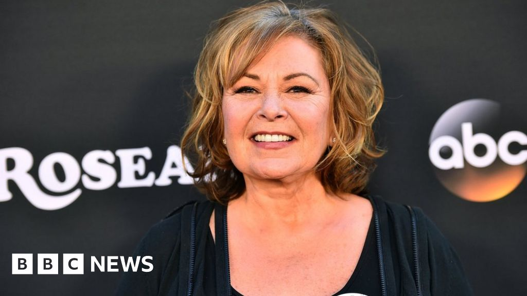 ABC drops Roseanne show after racist tweet