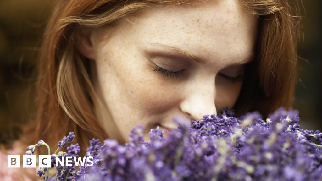 Left-handed women's quirk over sense of smell