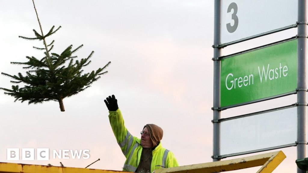 Rent Christmas Decorations.Should You Rent Your Christmas Tree Bbc News