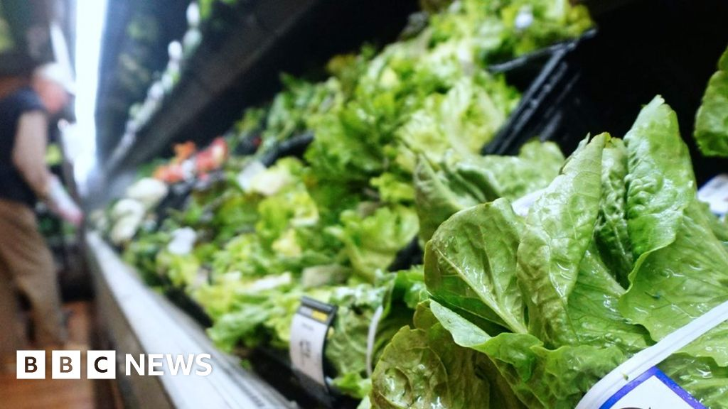 US and Canada in E. coli lettuce warning