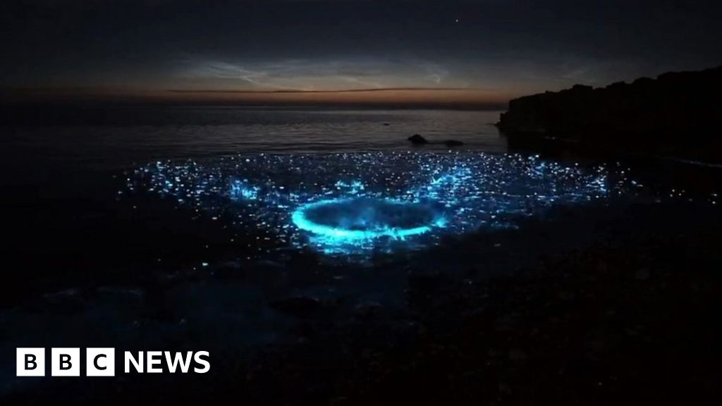 Sea sparkle causes Anglesey coastline to glow bright blue