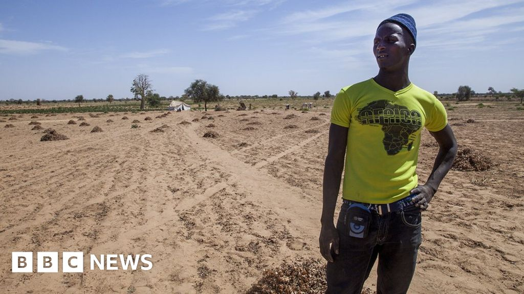 Desertification: The people whose land is turning to dust - BBC News