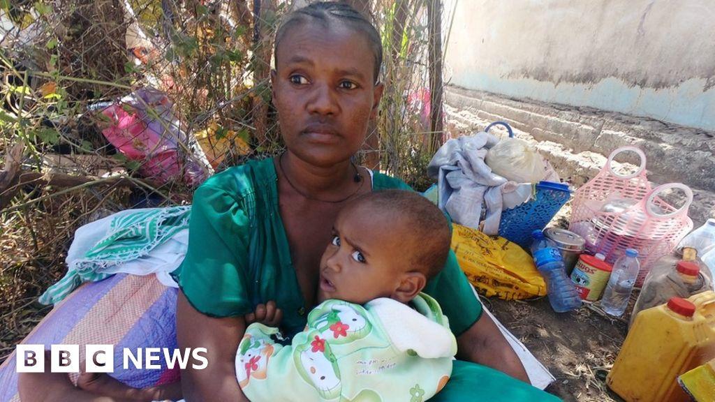 Ethiopia Tigray crisis: Rockets hit outskirts of Eritrea capital