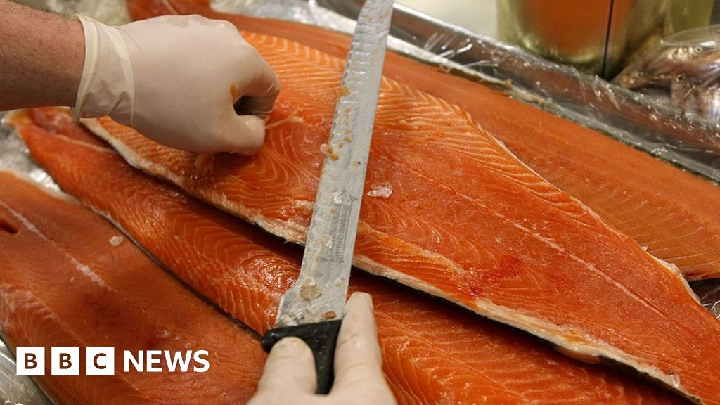 Salmon profits hit by lice, disease and escapes