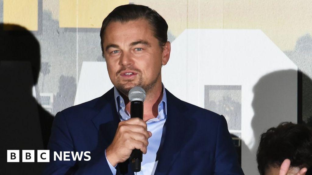 Amazon fires: Leonardo DiCaprio gives $5m for rainforest